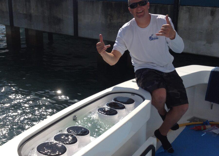 Tuna Tube packs in live well