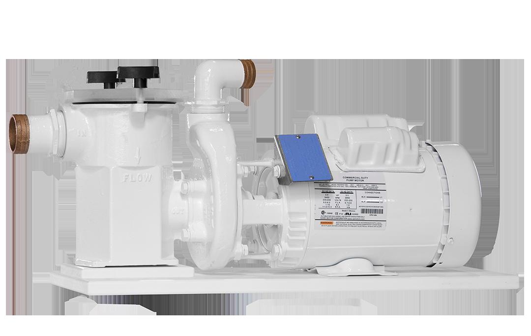 2 hp Scot pump